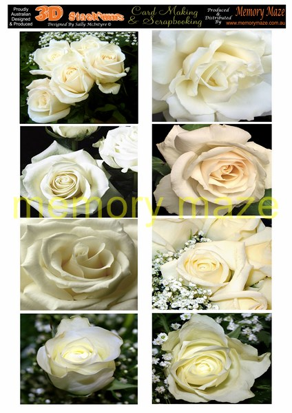 DS0706 cream roses  min buy 5  cut out with your nested dies