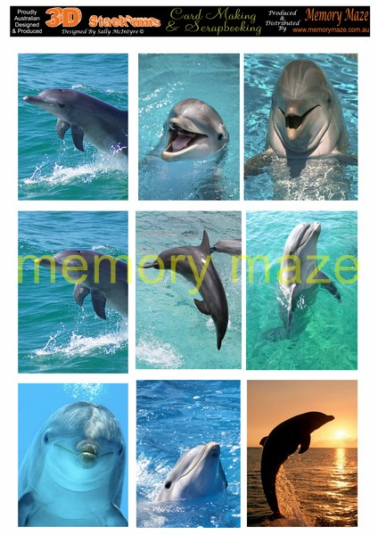 DS0709 DOLPHINS PORTRAIT  min buy 5 cut out with nested dies