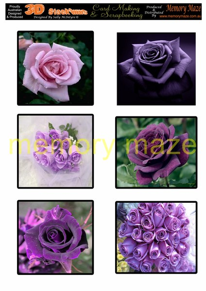 DS0717 purple roses   min buy 5 can be cut out with nested dies