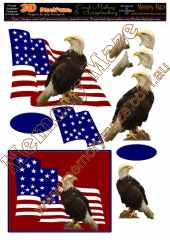 USA eagles