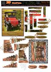 Vintage cars & out of Africa zebra