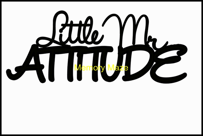 Little Mr attitude 120 x 75 mm