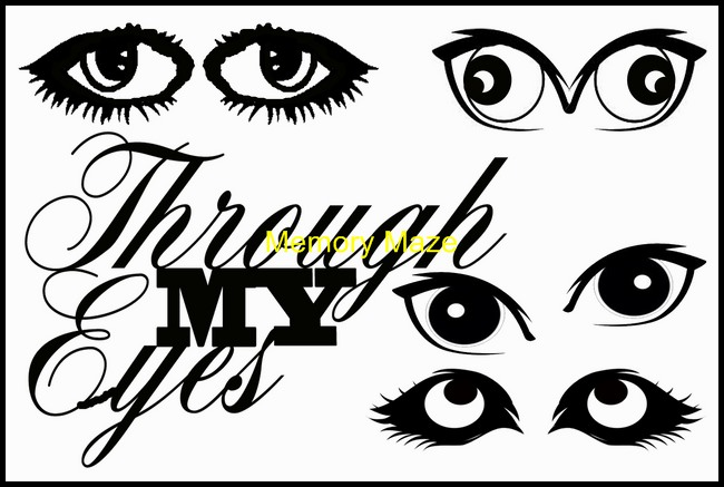 through my eyes  Memory Maze