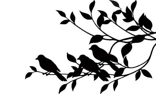 Birds on a branch  220x160